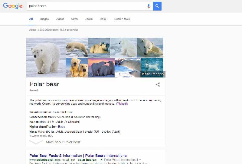 Ejemplo de nuevo SERP Google